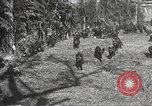 Image of black foxes Seattle Washington USA, 1934, second 34 stock footage video 65675061007