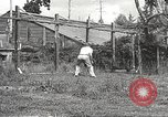 Image of black foxes Seattle Washington USA, 1934, second 43 stock footage video 65675061007