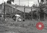 Image of black foxes Seattle Washington USA, 1934, second 44 stock footage video 65675061007