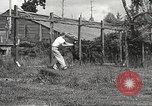 Image of black foxes Seattle Washington USA, 1934, second 45 stock footage video 65675061007