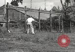 Image of black foxes Seattle Washington USA, 1934, second 46 stock footage video 65675061007
