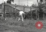 Image of black foxes Seattle Washington USA, 1934, second 48 stock footage video 65675061007