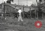 Image of black foxes Seattle Washington USA, 1934, second 53 stock footage video 65675061007