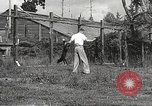 Image of black foxes Seattle Washington USA, 1934, second 54 stock footage video 65675061007