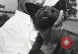 Image of black foxes Seattle Washington USA, 1934, second 59 stock footage video 65675061007