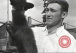 Image of black foxes Seattle Washington USA, 1934, second 61 stock footage video 65675061007