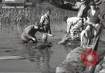 Image of Flood in Mississippi Greenwood Mississippi USA, 1932, second 56 stock footage video 65675061016