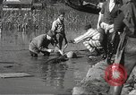 Image of Flood in Mississippi Greenwood Mississippi USA, 1932, second 58 stock footage video 65675061016