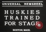 Image of dogs training for stage performance Boston Massachusetts USA, 1934, second 3 stock footage video 65675061028