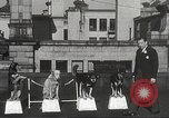 Image of dogs training for stage performance Boston Massachusetts USA, 1934, second 14 stock footage video 65675061028