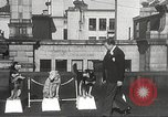 Image of dogs training for stage performance Boston Massachusetts USA, 1934, second 15 stock footage video 65675061028
