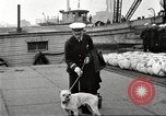Image of dreadnought New York United States USA, 1920, second 46 stock footage video 65675061037