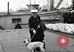 Image of dreadnought New York United States USA, 1920, second 47 stock footage video 65675061037
