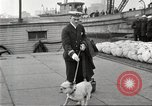 Image of dreadnought New York United States USA, 1920, second 54 stock footage video 65675061037