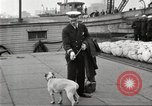 Image of dreadnought New York United States USA, 1920, second 55 stock footage video 65675061037
