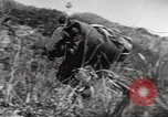 Image of United Nations troops Hungnam North Korea, 1952, second 4 stock footage video 65675061064