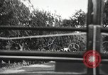 Image of Adolf Hitler speaks to crowd of workers at Gera, Thuringia, Germany Gera Germany, 1932, second 18 stock footage video 65675061185