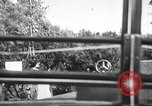 Image of Adolf Hitler speaks to crowd of workers at Gera, Thuringia, Germany Gera Germany, 1932, second 23 stock footage video 65675061185