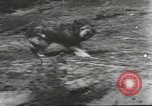 Image of Hitler Madchen Germany, 1944, second 20 stock footage video 65675061191