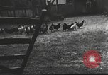 Image of Hitler Madchen Germany, 1944, second 24 stock footage video 65675061191
