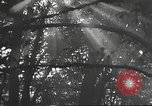 Image of Hitler Madchen Germany, 1944, second 4 stock footage video 65675061192