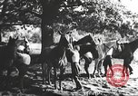Image of Hitler Madchen Germany, 1944, second 8 stock footage video 65675061192