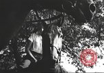 Image of Hitler Madchen Germany, 1944, second 12 stock footage video 65675061192