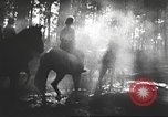 Image of Hitler Madchen Germany, 1944, second 33 stock footage video 65675061192