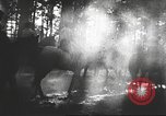 Image of Hitler Madchen Germany, 1944, second 37 stock footage video 65675061192