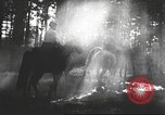 Image of Hitler Madchen Germany, 1944, second 39 stock footage video 65675061192