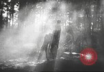 Image of Hitler Madchen Germany, 1944, second 41 stock footage video 65675061192