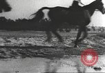 Image of Hitler Madchen Germany, 1944, second 45 stock footage video 65675061192