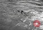 Image of Hitler Madchen Germany, 1944, second 55 stock footage video 65675061193
