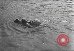 Image of Hitler Madchen Germany, 1944, second 57 stock footage video 65675061193