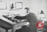 Image of German forces repair telephone line Germany, 1944, second 14 stock footage video 65675061207
