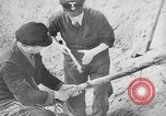 Image of German forces repair telephone line Germany, 1944, second 34 stock footage video 65675061207