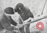 Image of German forces repair telephone line Germany, 1944, second 35 stock footage video 65675061207