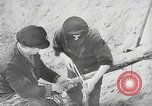 Image of German forces repair telephone line Germany, 1944, second 36 stock footage video 65675061207