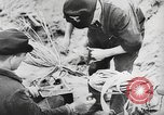 Image of German forces repair telephone line Germany, 1944, second 43 stock footage video 65675061207