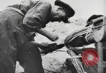 Image of German forces repair telephone line Germany, 1944, second 44 stock footage video 65675061207