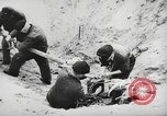 Image of German forces repair telephone line Germany, 1944, second 48 stock footage video 65675061207
