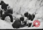 Image of German forces repair telephone line Germany, 1944, second 50 stock footage video 65675061207