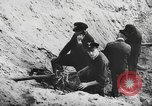 Image of German forces repair telephone line Germany, 1944, second 55 stock footage video 65675061207
