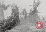 Image of United States soldiers Enewetak Atoll Marshall Islands, 1944, second 16 stock footage video 65675061241