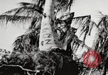 Image of United States soldiers Enewetak Atoll Marshall Islands, 1944, second 42 stock footage video 65675061241