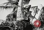 Image of United States soldiers Enewetak Atoll Marshall Islands, 1944, second 43 stock footage video 65675061241