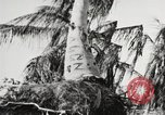Image of United States soldiers Enewetak Atoll Marshall Islands, 1944, second 44 stock footage video 65675061241