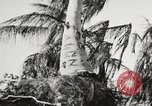Image of United States soldiers Enewetak Atoll Marshall Islands, 1944, second 45 stock footage video 65675061241