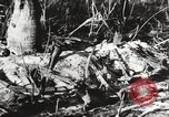 Image of United States soldiers Enewetak Atoll Marshall Islands, 1944, second 49 stock footage video 65675061241