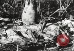 Image of United States soldiers Enewetak Atoll Marshall Islands, 1944, second 51 stock footage video 65675061241